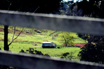 rural, countryside, farm, house, fence, wooden, nature, bokeh, grass