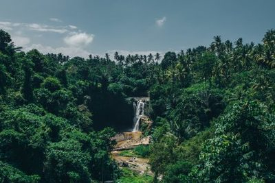 waterfall, nature, landscape, water, forest, trees, sky, clouds, greenery, destination