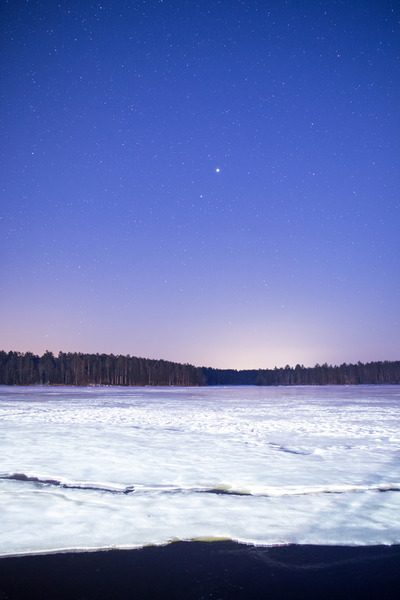 winter, snow, cold, sky, night, stars, starry, astronomy, nature, forest
