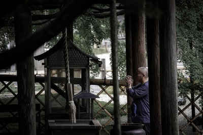 temple, architecture, asian, culture, monk, praying, religion, prayer