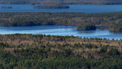 sea, water, islands, nature, landscape, forests, environment, waterscape
