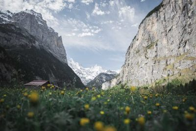 mountains, gorge, alpine, sky, clouds, nature, meadow, flowers, valley, mountain