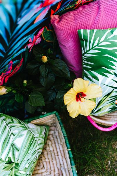 outdoor, picnic, garden, flowers, cushions, tropical, exotic, pattern