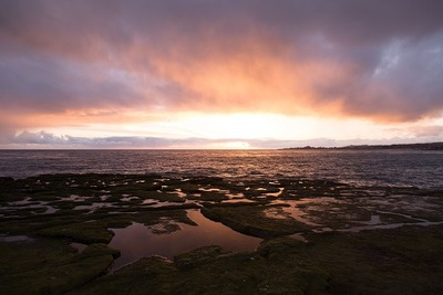 ocean, sea, water, coast, sky, clouds, landscape, sunrise, sunset, dusk, dawn, waterscape