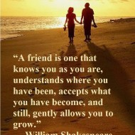 A friend is one that knows you as you are