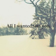 All I wanted is you