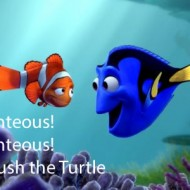 Crush the turtle - Righteous Righteous - Finding Nemo Quote