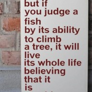 Everybody is a genius. But if you judge a fish by it's ability to climb a tree