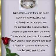 Friendship comes from the heart. Someone who accepts you for being the person you are