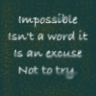 Impossible is an excuse not to try