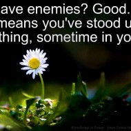 It's good to have enemies, that means you've stood up for something