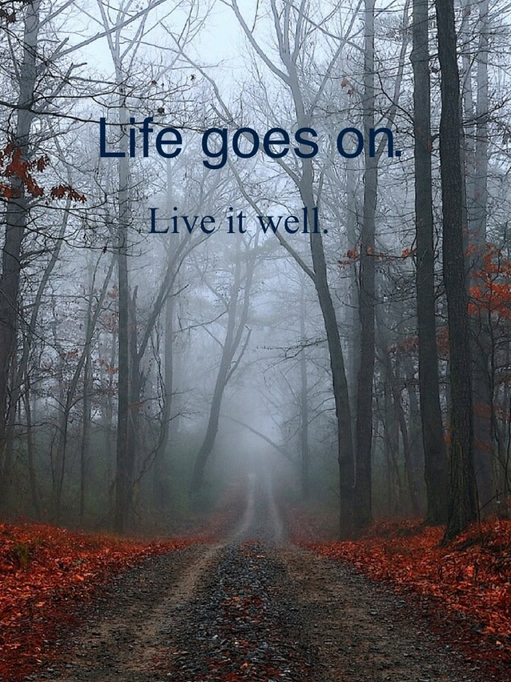 Life Goes On So Live It Well