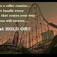 Life is a roller coaster, just handle every bump