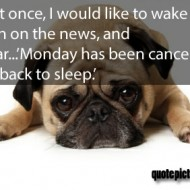 Monday Quotes - Just once, I would like to wake up, turn on the news and hear Monday has been cancelled