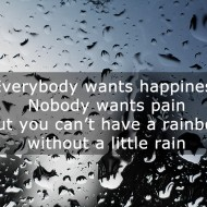 Quotes on rain - Everybody wants happiness, nobody wants pain