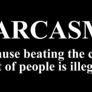 Sarcams because beating the crap out of people is illegal