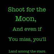 Shoot for the moon, even if you miss you will land among the stars
