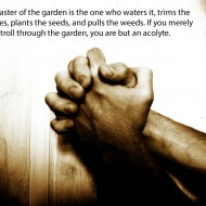 Stewardship Quotes - The master of the garden is the one who waters it, trims the branches