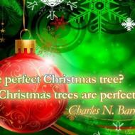 The perfect Christmas tree