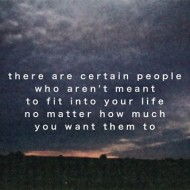 There are certain people who aren't mean to fit into your life nomatter how much you want them to