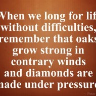 When we long for life without difficulties, remember that oaks grow strong in contrary winds
