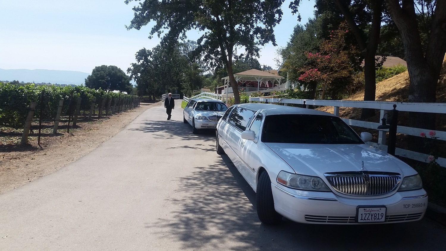 Santa Barbara Limousine Wine Tour