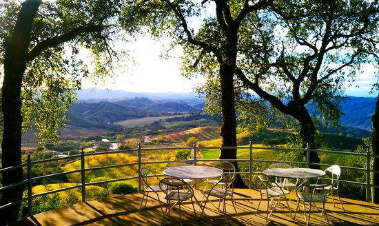Paso Robles Winery Wine Tours Santa Barbara
