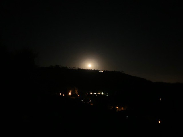 Moon291219