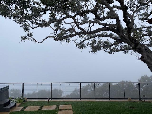 Fog2022020