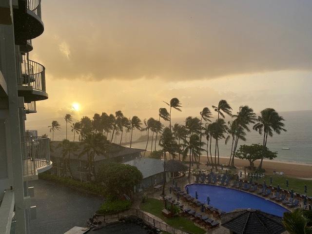 Hawaii2292020