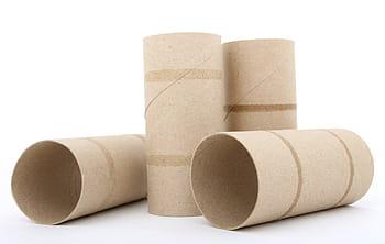 Empty Toilet Paper & Paper Towel Rolls