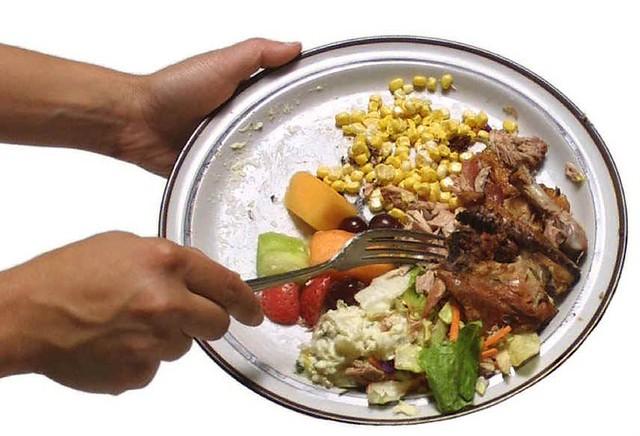 Food Scraps
