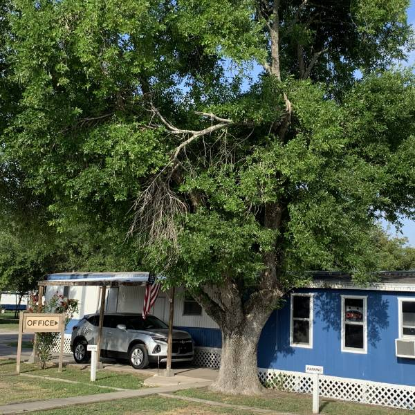 Oasis RV And Mobile Home Park Main Office