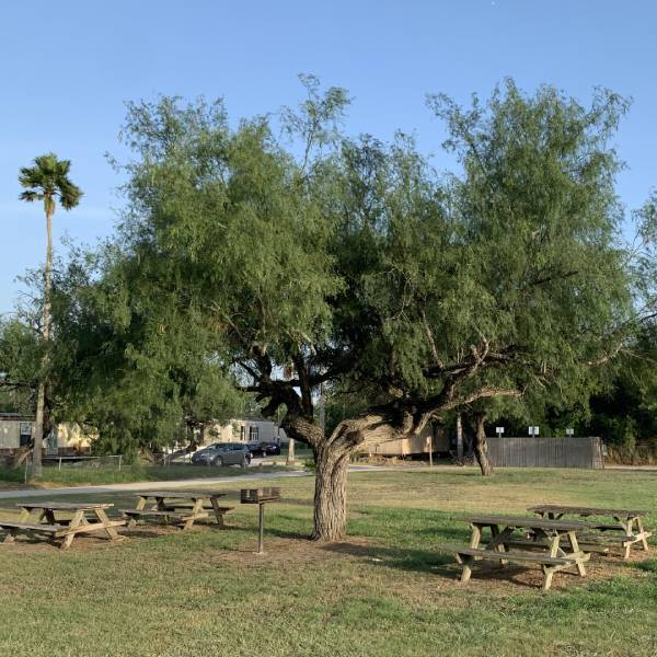 Oasis RV And Mobile Home Park Kingsville