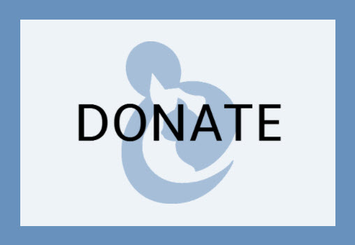 Donate To The Animal Rescue Center Of California