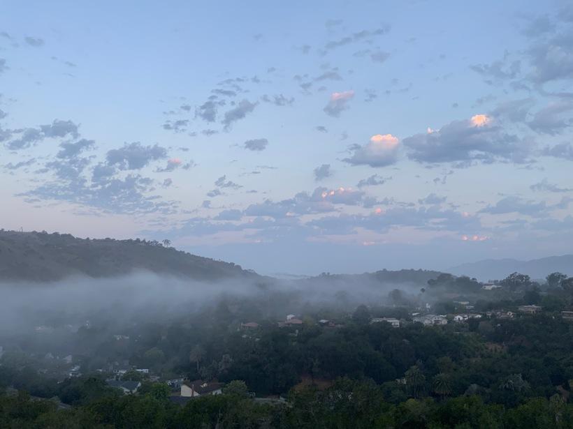 Fog106172021