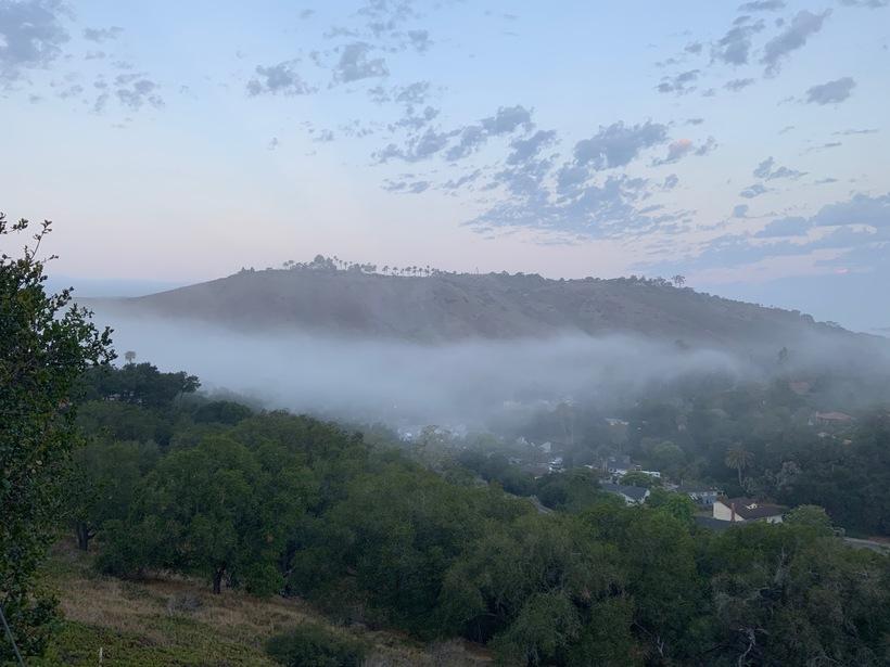 Fog206172021