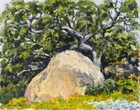"""""""Poppies at the Rock"""" 8 X 10, oil"""
