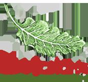 ah juice organic cafe logo