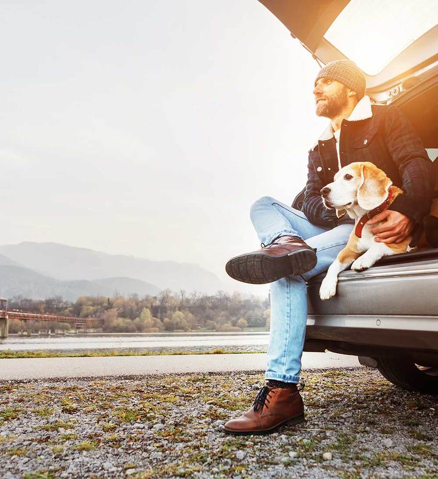 Traveling with Pets in the US