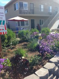 VRBO Carpinteria Beach Vacation Rentals BeachComber12