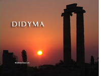 Stock Footage of Didyma Didima Turkey Ancient Greece Greek Temple Apollo
