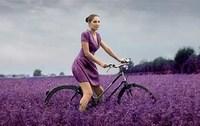 Electric Bike with Pedego/tour de Lavender