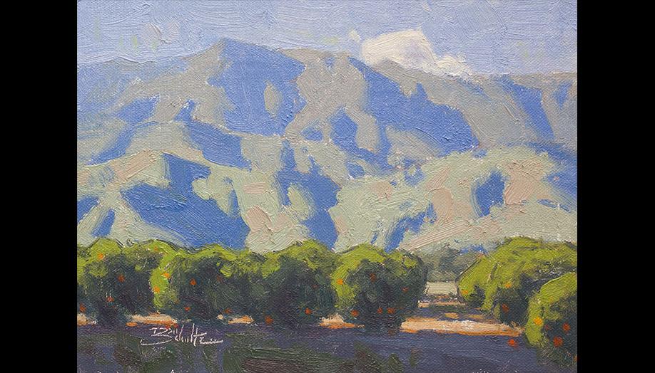 Dan Schultz, Ojai Gallery Tour