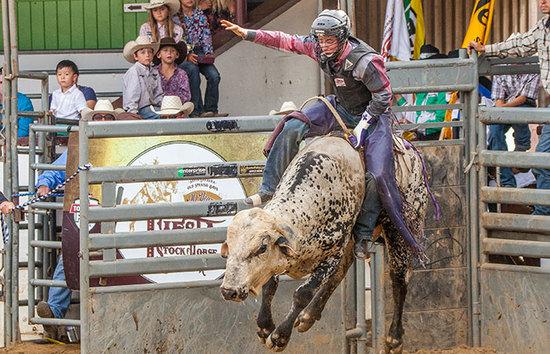 Professional Bull Riders (PBR)/ 7:00pm