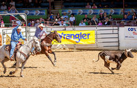Fiesta Stock Horse Show & Rodeo (Competencia De Los Vaqueros)/ 8am
