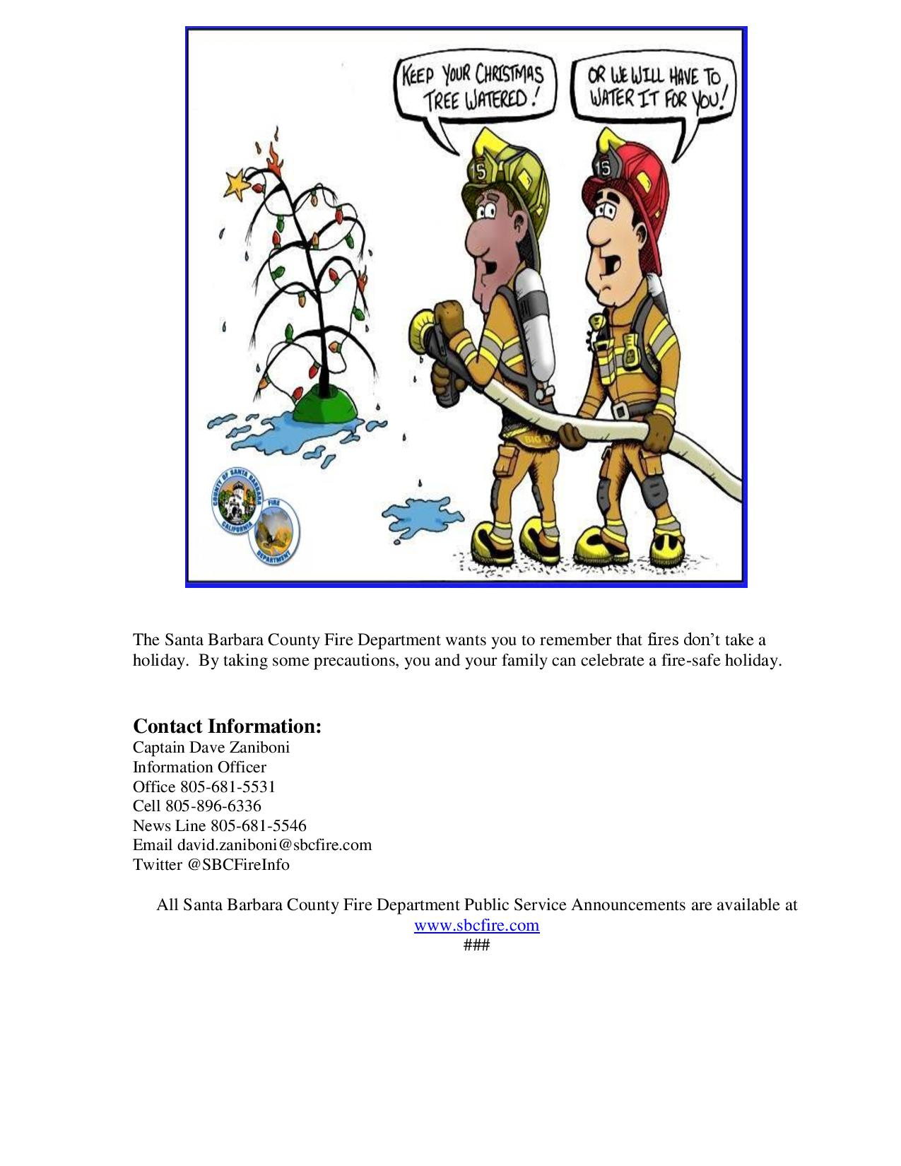 PSA Christmas Tree Safety-pg2