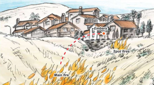 Media Guide Vegetation Fire Science