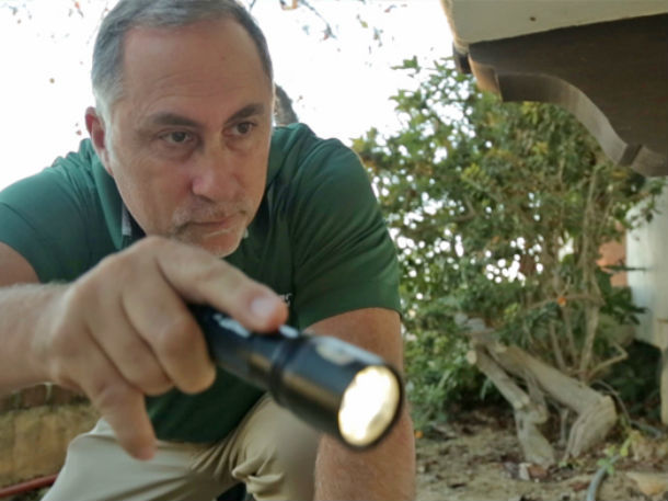 Termite Inspections Nipomo
