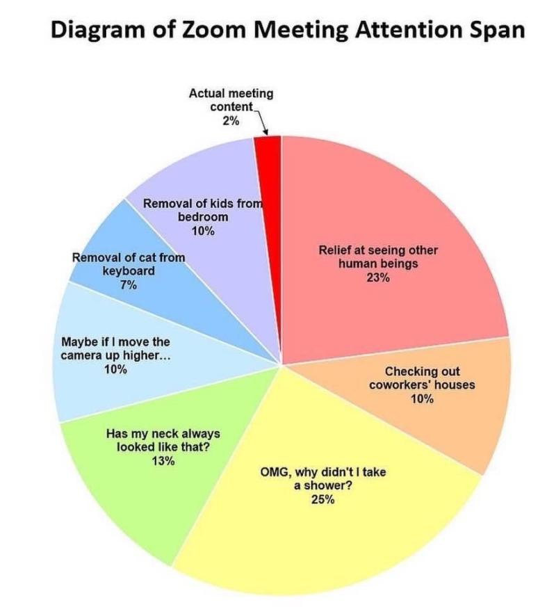 What Happens in a Zoom Meeting